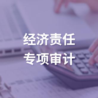 经济责任专项审计